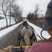 Mark & Patty Driving Horse Cart