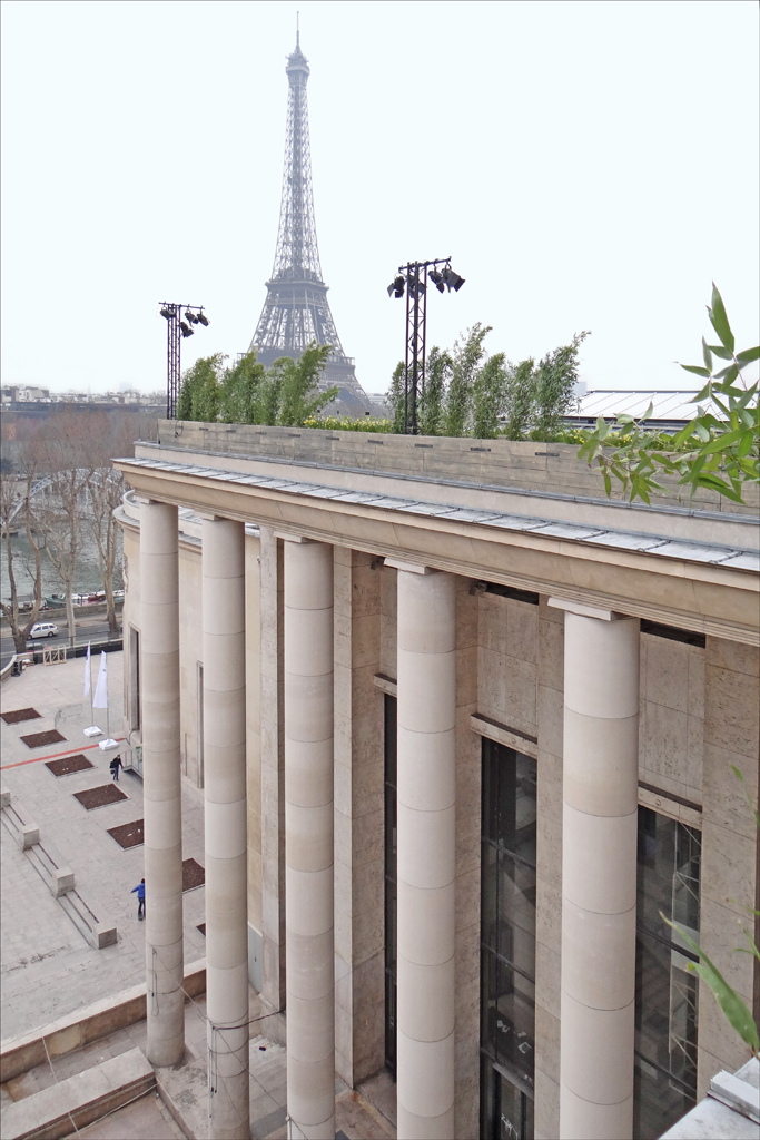 Un jardin sur le toit palais de tokyo du 4 au 7 avril for Au jardin du port le palais