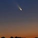 The First Great Comet of 2013