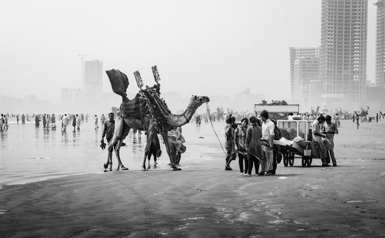 Clifton Beach, Karachi , Pakistan : pakistan