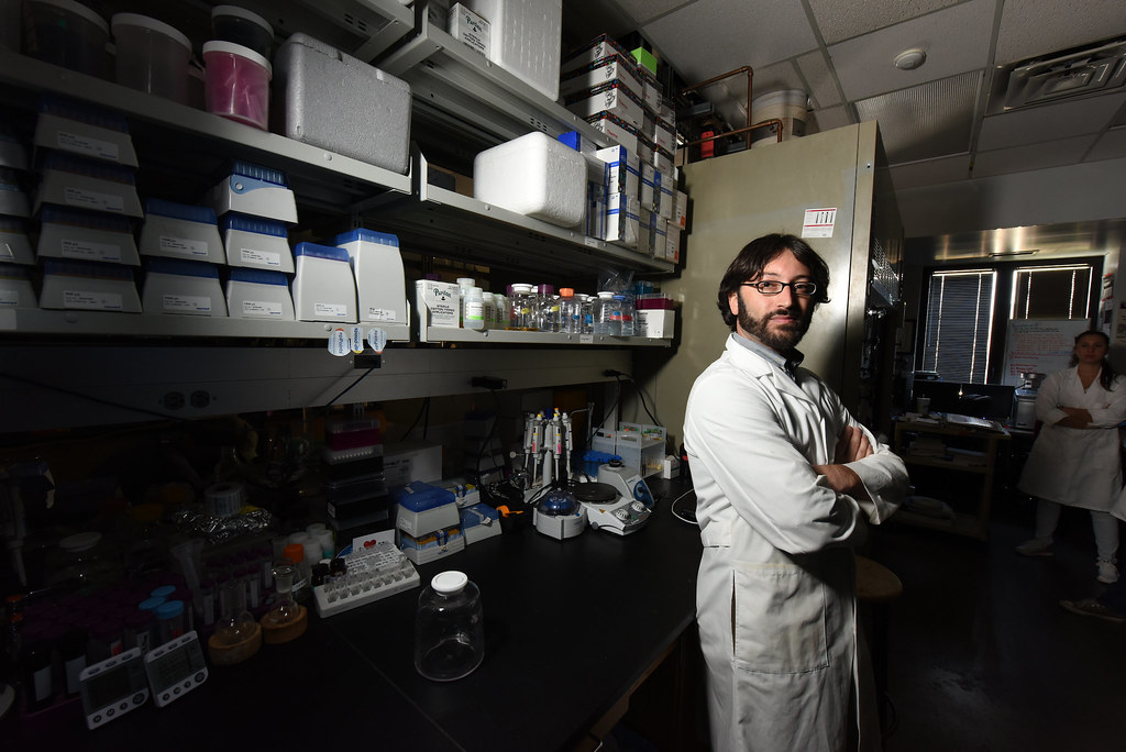 """Steven Mansoorabadi, an assistant professor in the Department of Chemistry and Biochemistry at Auburn University, has received a five-year, $703,000 CAREER Award from the National Science Foundation for his proposal, """"Mechanistic and Biosynthetic Studies of Dinoflagellate Bioluminescence."""""""