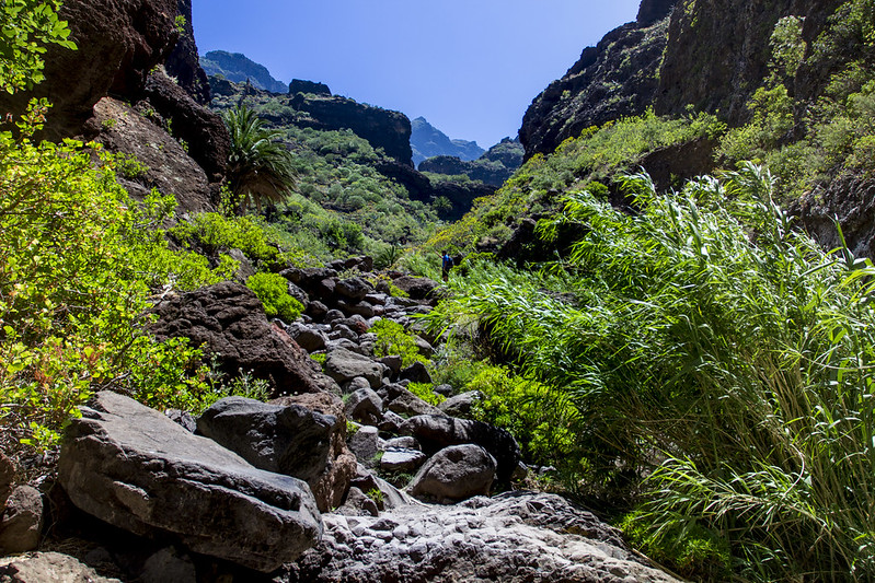 Masca Trekking - Tenerife, Spain