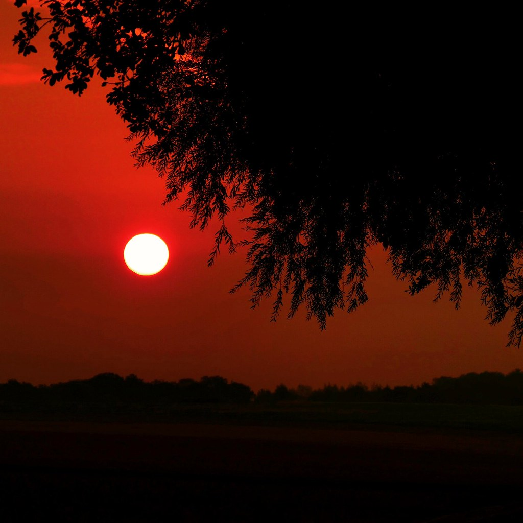 Herbst_Dunst_Sonnenaufgang
