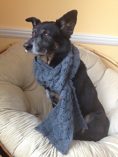 Little Miss Stoic Models a Scarf | by doggedknits