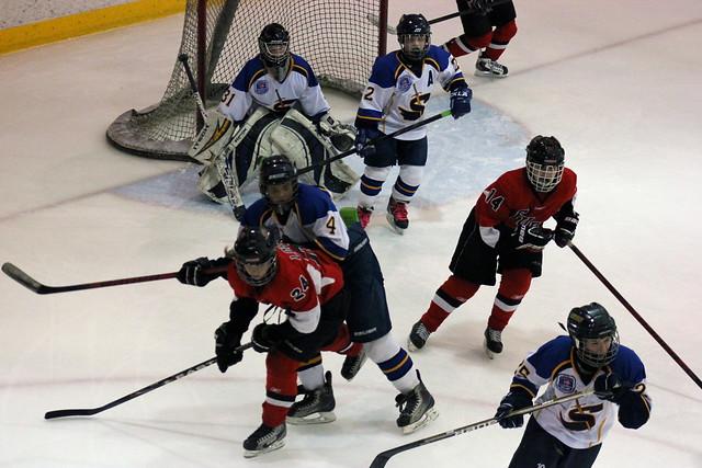 the 2012 chicago fury u14 aaa girls hockey team vs