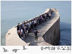 金門國家公園海岸環境教育(0924)-03