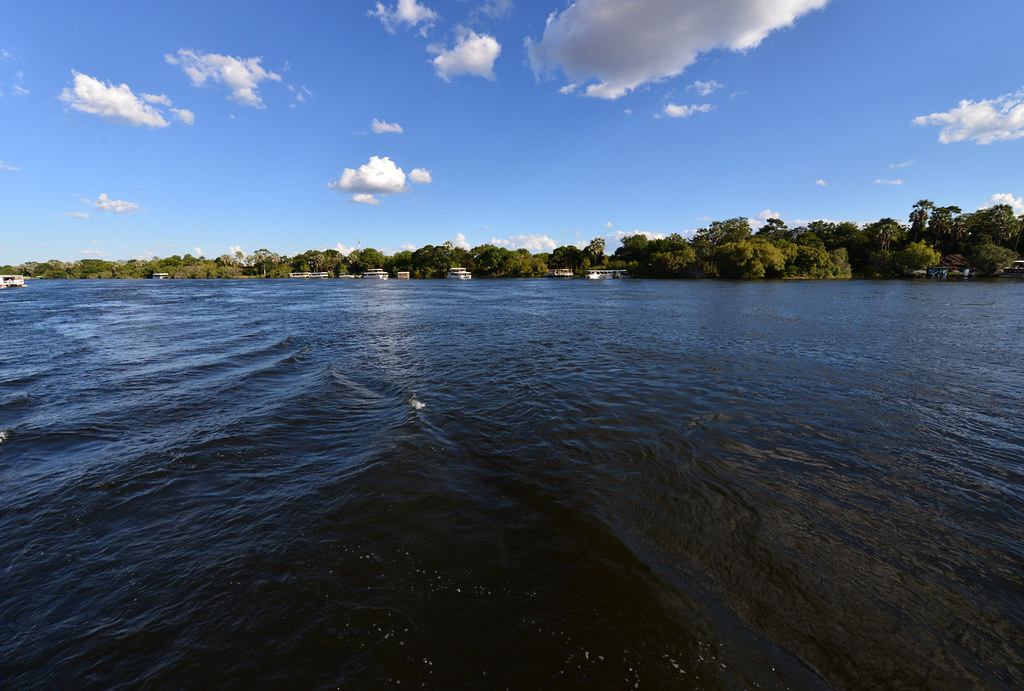 DSC_6141 | The Zambezi is Africa's fourth largest River ...