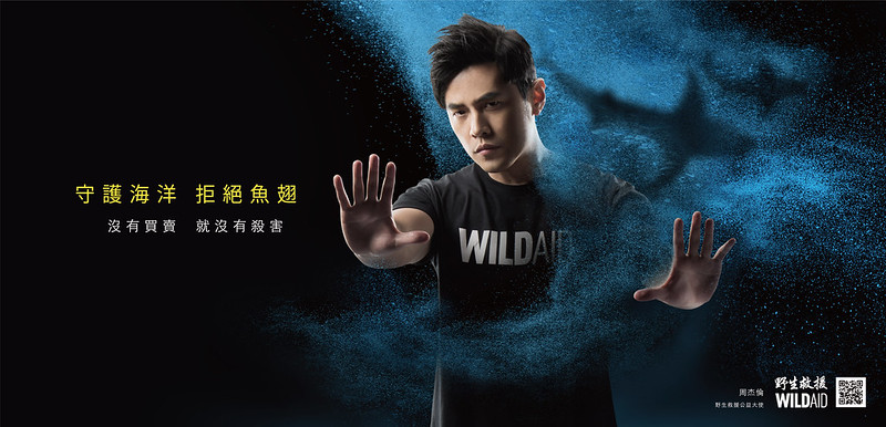 野生救援關鍵:沒有買賣就沒有殺害。周董說,魚翅和毒品一樣碰不得!圖片來源:WildAid Taiwan