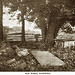 Page Family tombs at Rosewell Plantation- Gloucester County Virginia