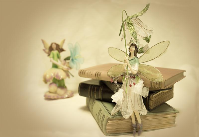 Lilly, el hada de los libros