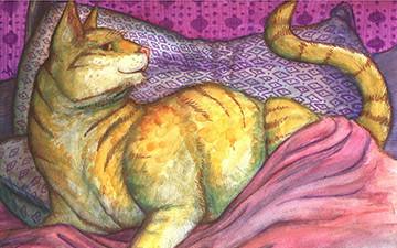 F Camelli Domestic Cat, Felis ca...