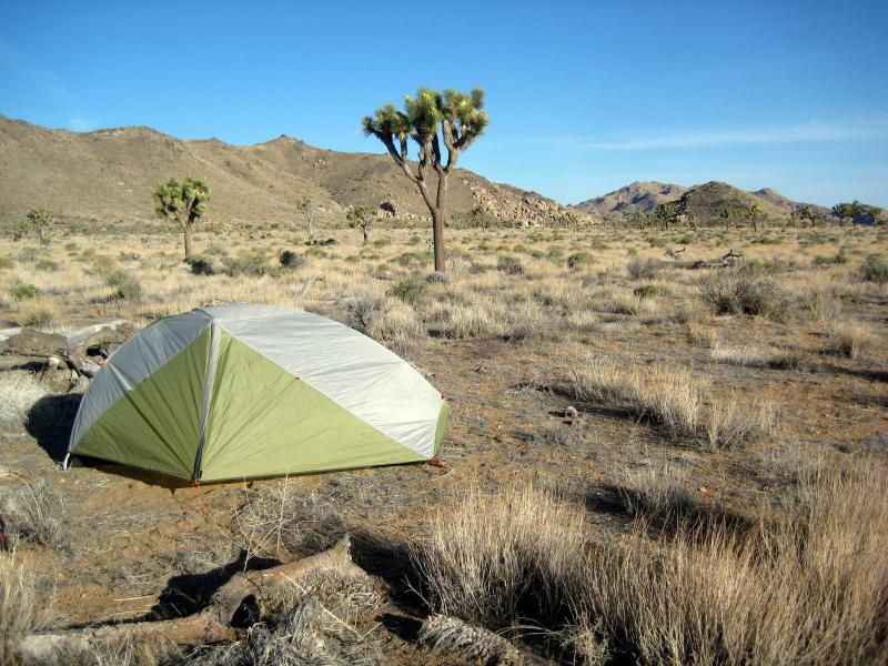 my 1 person rei tent on juniper flats