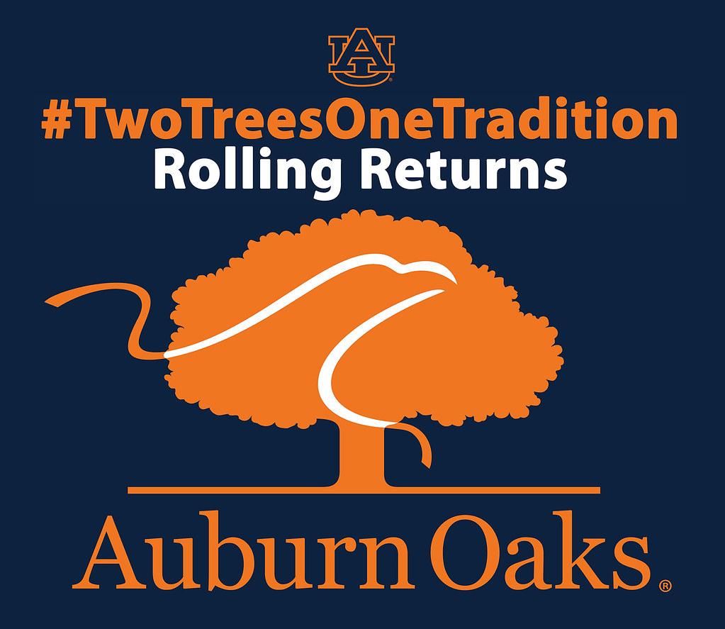 auburn universitys tradition of rolling the auburn oaks