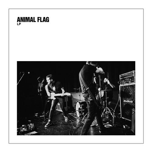 Animal Flag - LP
