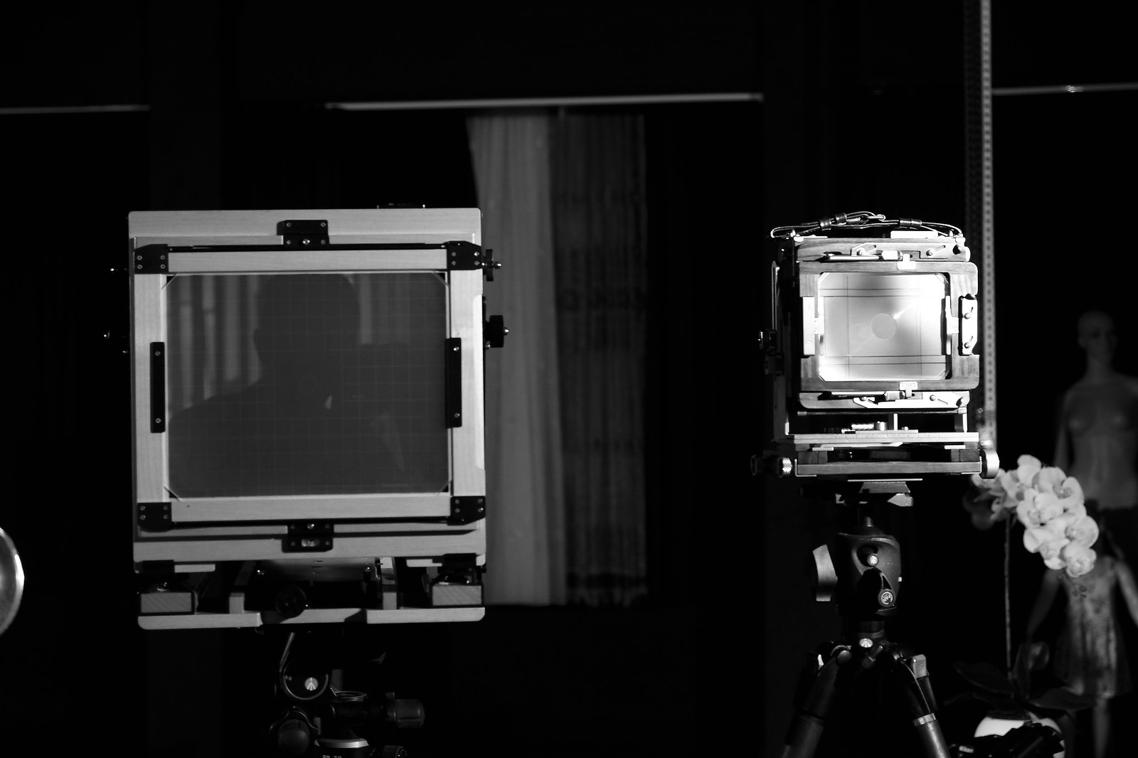 chamonix 8X10 相機開箱