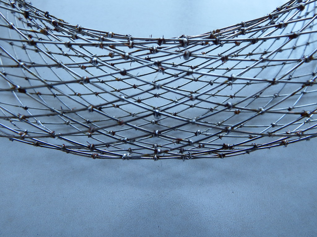 Wireframe Dupin Cyclide | Finished | fdecomite | Flickr