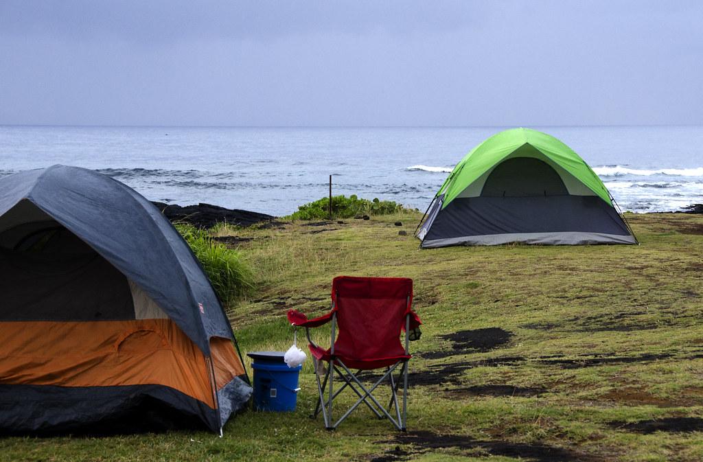 Punalu'u Black Sand Beach - Photo by Susan Smith