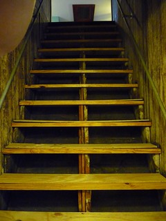 Image Result For Dog Stairs Steps