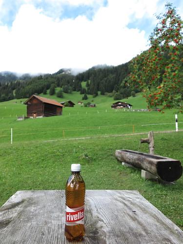 Rivella (1. Hälfte) an der Bushaltestelle Rizlina (in Liechtenstein)