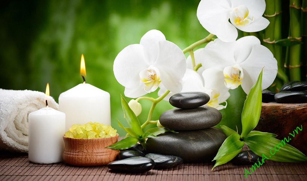 Hinh anh dep lam tranh treo tuong spa hoa phong lan