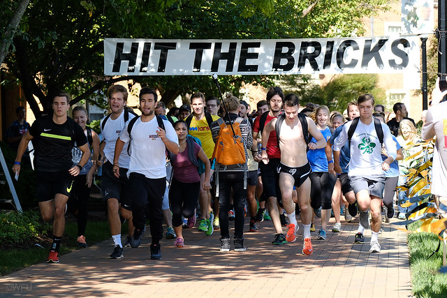 Hit the Bricks 2016