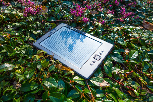 ebook in bush