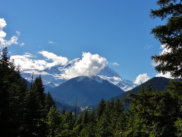 Image shows Mount Rainier, partially hidden by patchy white clouds clinging just below the summit. The skies are bright blue. The White River valley is visible in the foreground, heavily forested.