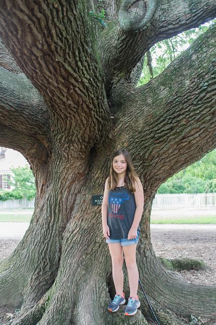 Please don't climb on the tree.