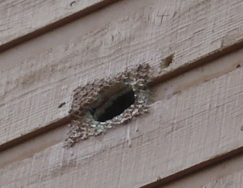 how to cut a hole in an exterior wall