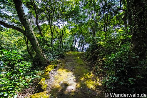 kagoshima (26 von 32)