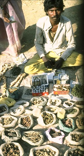 A man with forest plant species in a local market in Central India