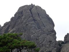Dans la montée au pied de la face N du Capellucciu