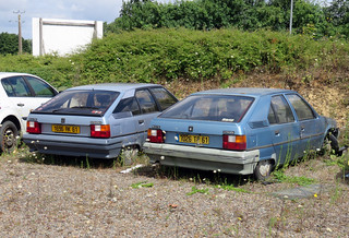 Citroen BX 16 TRS and 14 RE | by Spottedlaurel