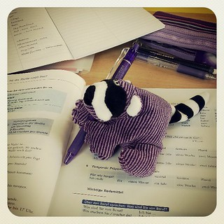 Raccoon busy studying. I need a name for this guy. :) | by janetsaw