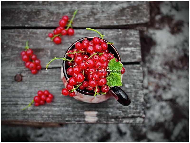 ...red currant
