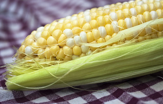 corn | by Muffet