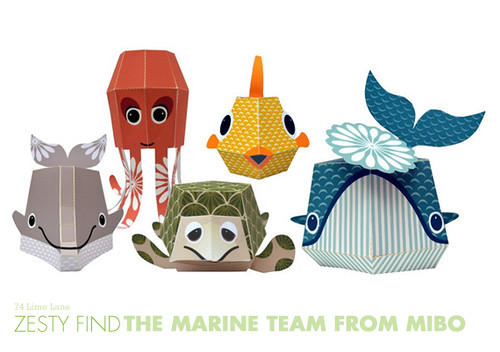 {zesty find} the marine team from Mibo | by 74 Lime Lane