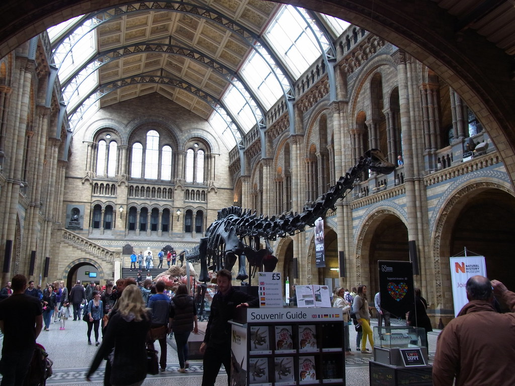 Foyer Museum Uk : Natural history museum foyer read about this photo on my