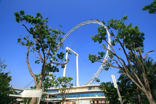 Day 220 - Singapore Flyer! | by El Nino - AFG