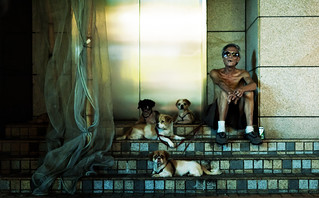 Walking the Dogs at Midnight in Hong Kong Like a Boss | by Jonathan Kos-Read