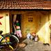 நாணமுள்ள பெண் • Madurai