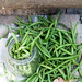 Fagiolini Sottolio - Green beans preserved in olive oil