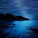 the beach under the stars