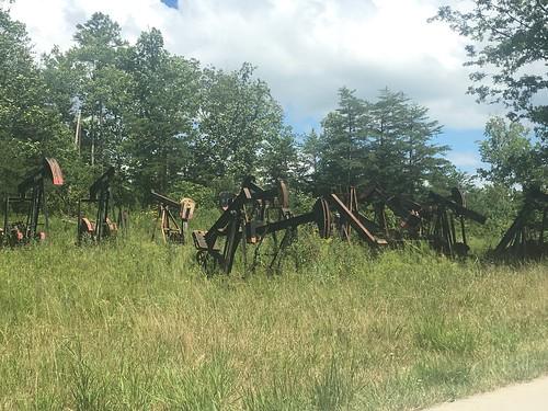Field of oil rigs