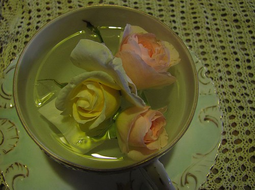 roses in antique china | by withrow