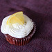 Lemon Chocolate Cupcake