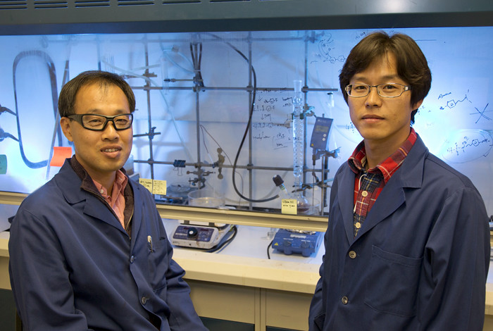 New class of fuel cells offer increased flexibility, lower cost