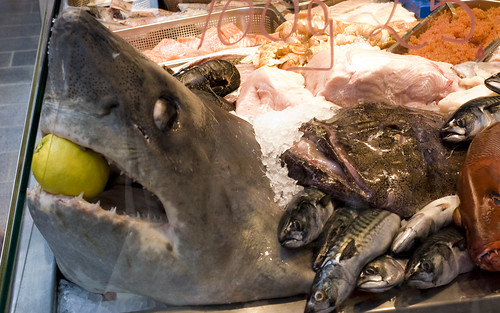Fish market at Torvehallerne | by Tavallai