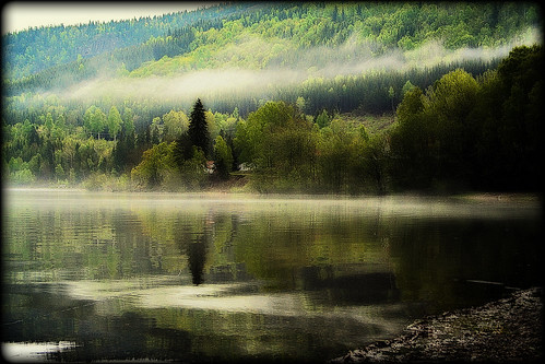 "Silent morning | by asgeirkolberg ""busy """