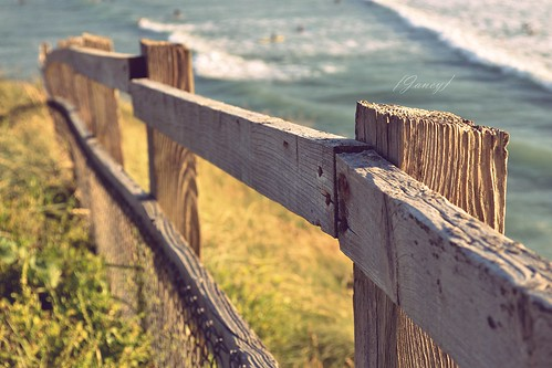 Coastal fence ~ HFF    [Explore] | by Electra_star